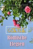 Römische Elegien (eBook, ePUB)
