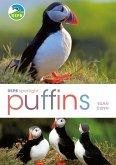 RSPB Spotlight: Puffins (eBook, PDF)