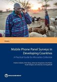 Mobile Phone Panel Surveys in Developing Countries: A Practical Guide for Microdata Collection