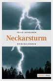 Neckarsturm (eBook, ePUB)