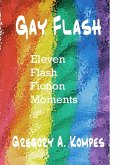 Gay Flash (eBook, ePUB)