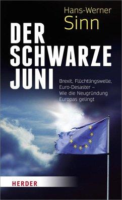 Der Schwarze Juni - Sinn, Hans-Werner
