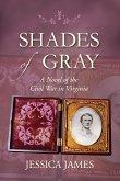 Shades of Gray: A Novel of the Civil War in Virginia (eBook, ePUB)