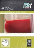 Blutgruppen und Rhesus-Faktor, 1 DVD