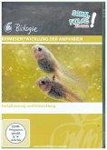 Keimesentwicklung der Amphibien, 1 DVD