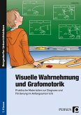 Visuelle Wahrnehmung und Grafomotorik