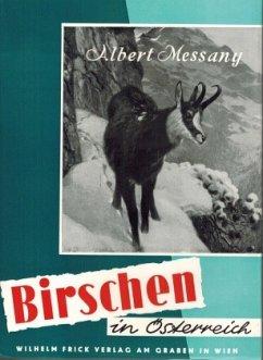 Birschen in Österreich - Messany, Albert