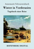 Winter in Vorderasien (eBook, ePUB)