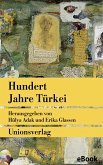 Hundert Jahre Türkei (eBook, ePUB)