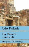 Die Mauern von Delhi (eBook, ePUB)