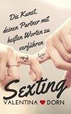 Sexting (eBook, ePUB)
