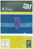 Proteine - Aufbau und Eigenschaften, 1 DVD