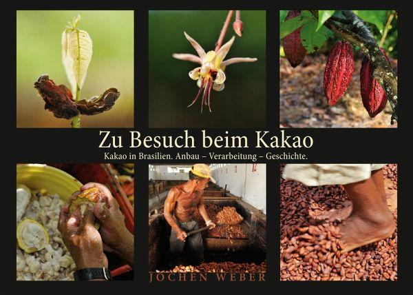 Zu Besuch beim Kakao - Weber, Jochen