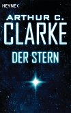 Der Stern (eBook, ePUB)