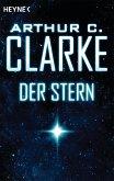 Der Stern (eBook, ePUB)