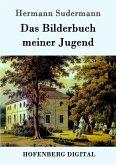 Das Bilderbuch meiner Jugend (eBook, ePUB)
