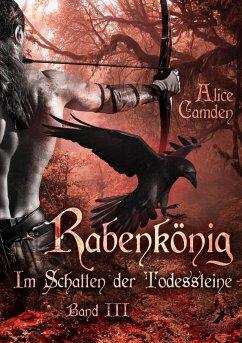 Rabenkönig / Im Schatten der Todessteine Bd.3