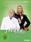 In aller Freundschaft - Die 17. Staffel, Teil 2, 18 Folgen (5 Discs)
