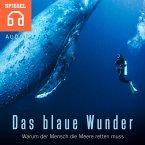 Das blaue Wunder (MP3-Download)