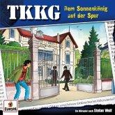 Ein Fall für TKKG - Dem Sonnenkönig auf der Spur, 1 Audio-CD