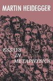 Essays in Metaphysics (eBook, ePUB)