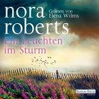 Ein Leuchten im Sturm (MP3-Download)