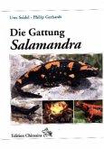Die Gattung Salamandra