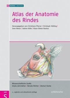 Atlas der Anatomie des Rindes