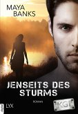 Jenseits des Sturms / KGI Bd.8 (eBook, ePUB)