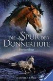 Sternenfeuer / Die Spur der Donnerhufe Bd.2
