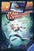 Jagd auf den Hafenhai / Die Knickerbocker-Bande Bd.12