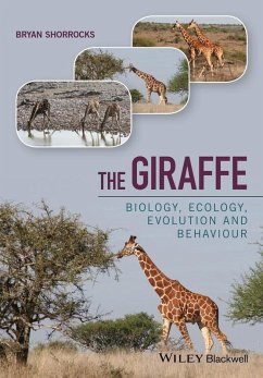 The Giraffe (eBook, ePUB) - Shorrocks, Bryan