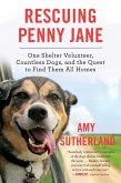 Rescuing Penny Jane (eBook, ePUB)