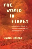 The World in Flames (eBook, ePUB)
