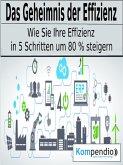 Das Geheimnis der Effizienz (eBook, ePUB)