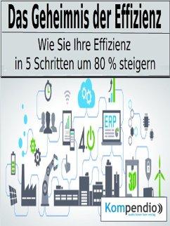 Das Geheimnis der Effizienz (eBook, ePUB) - Dallmann, Alessandro