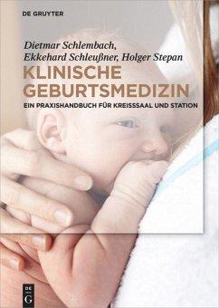 Klinische Geburtsmedizin - Schlembach, Dietmar; Schleußner, Ekkehard; Stepan, Holger