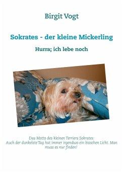 Sokrates - der kleine Mickerling