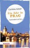Ein Jahr in Prag (eBook, ePUB)