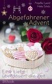 Abgefahrener Advent (eBook, ePUB)