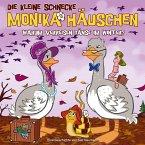 Warum verreisen Gänse im Winter?, 1 Audio-CD / Die kleine Schnecke, Monika Häuschen, Audio-CDs Tl.46