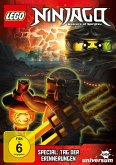 LEGO Ninjago: Masters of Spinjitzu - Tag der Erinnerungen