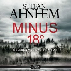 Minus 18 Grad / Fabian Risk Bd.3 (2 MP3-CDs) - Ahnhem, Stefan