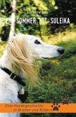 Ein Sommer mit Suleika