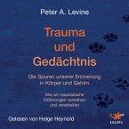 Trauma und Gedächtnis (MP3-Download)