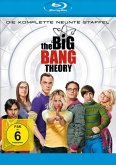 The Big Bang Theory - Die komplette 9. Staffel (2 Discs)