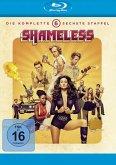 Shameless - Die komplette 6. Staffel (2 Discs)