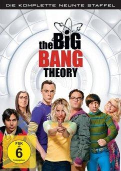 Big Bang Theory Staffel 9 Folge 14