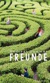Freunde (eBook, ePUB)