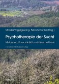 Psychotherapie der Sucht (eBook, PDF)